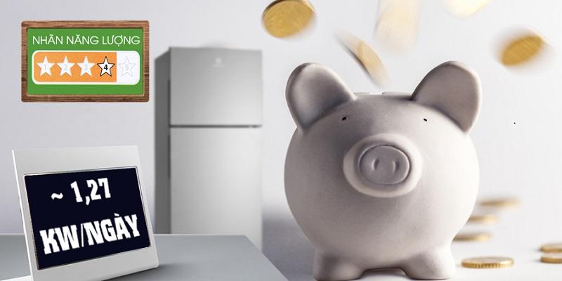 Với khả năng tiết kiệm điện năng cao, tủ lạnh Electrolux ETB3202MG có thể tiêu thụ chỉ khoảng 1.27 kW điện năng cho mỗi ngày