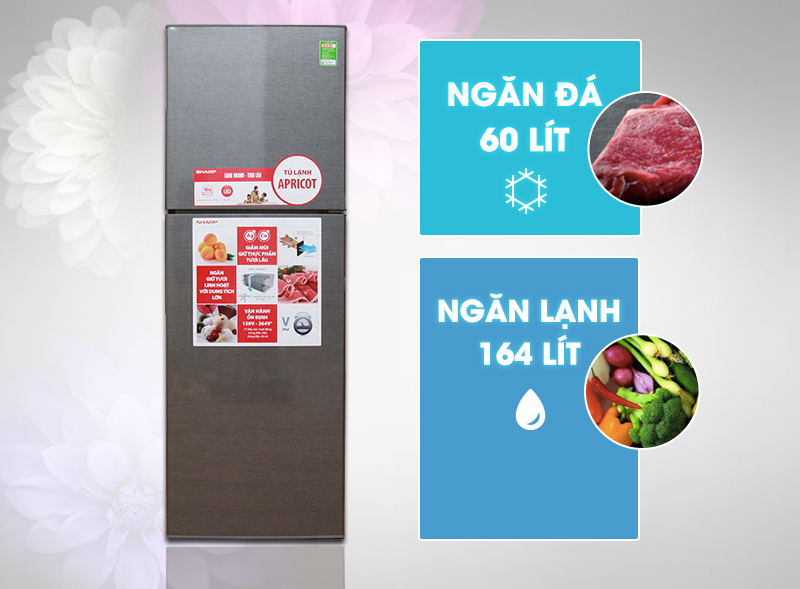 Tủ lạnh với ngăn bảo quản rau quả lớn